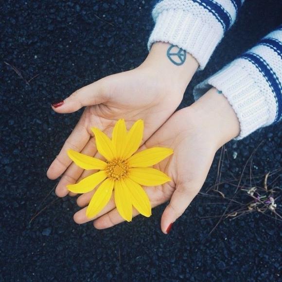 Tháng 10 đến Đà Lạt ngắm hoa dã quỳ đẹp nhất năm