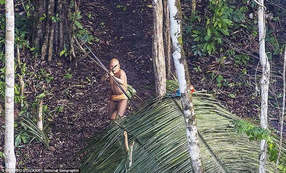 bộ lạc, tổ tiên, bộ lạc nguyên thủy,  Ricardo Stuckert