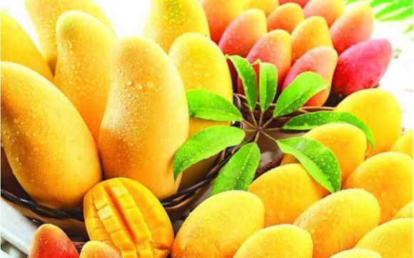 tiểu đường, nên ăn xoài khi bị tiểu đường, chữa tiểu đường, sức khỏe