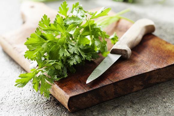 cây cảnh, thảo dược, cây thuốc,sức khỏe,chăm sóc sức khỏe