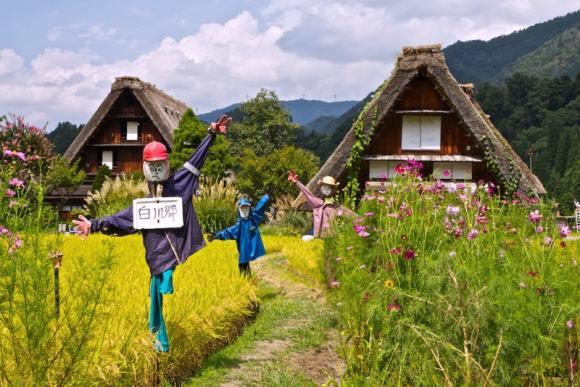 Cung đường Rồng Bay, Du lịch Nhật Bản, Công ty Du Lịch Việt