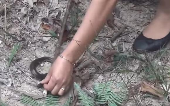 cô gái xinh đẹp, vào rừng chặt 1 cành cây, sau đó làm việc không tưởng