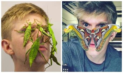 côn trùng, súc miệng, bác sĩ, bệnh