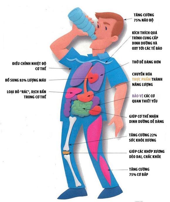 dựa theo cân nặng để biết mình cần uống bao nhiêu nước, uống nước dựa vào cân nặng, uống nước