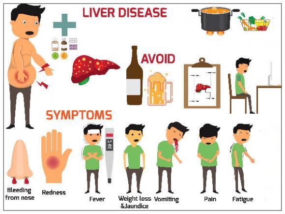 gan, gan tổn thương, tổn thương gan, dấu hiệu gan tổn thương, bệnh gan