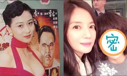 triệu vy, diễn viên Triệu Vy, Triệu Vy thời trang, én nhỏ Triệu Vy, sao Hoa ngữ