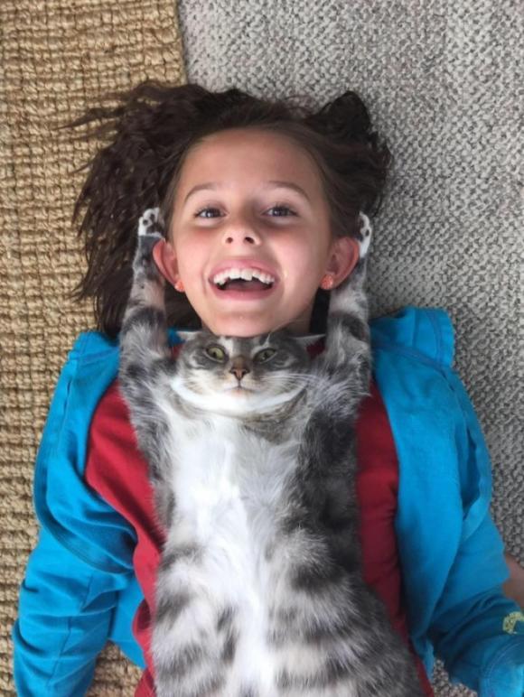 ảnh cười, ảnh cười động vật, ảnh mèo, ảnh chó, ảnh thú cưng