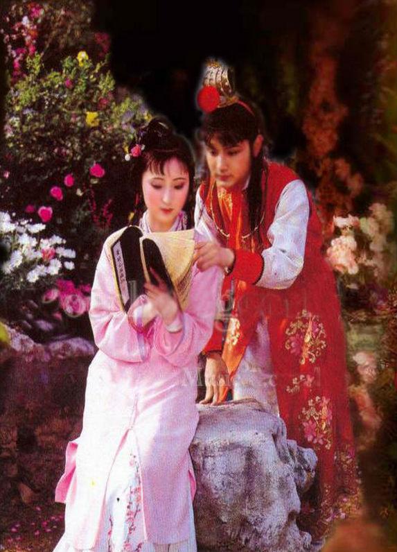 Lâm Đại Ngọc, Hồng Lâu Mộng, Trần Hiểu Húc