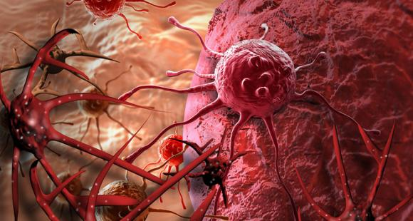 Phát hiện chất chống ung thư mạnh hơn thuốc 10.000 lần có trong loại gia vị ở Việt Nam