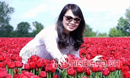 tin tức nhạc,nhạc Việt,Hồ Ngọc Hà,Vpop
