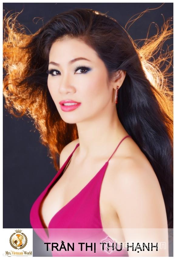 Mrs Vietnam World 2017, Đêm chung kết Mrs Vietnam World 2017, Sao Việt