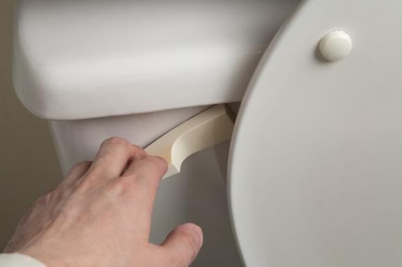 xả nước, xả nước bồn cầu, xả nước cầu tiêu, đóng nắp bồn cầu khi xả nước, bồn cầu, ngậm miệng khi xả nước bồn cầu