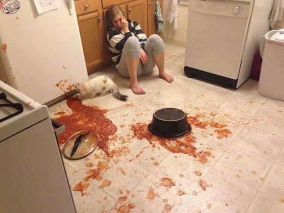 ảnh cười, nàng dâu vụng về, cô nàng không biết nấu ăn, món ăn kinh dị, món ăn khi ra mắt nhà chồng