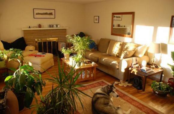 Những điều kiêng kỵ, kiêng kỵ khi bố trí nội thất, phong thủy trong nhà,phong thủy