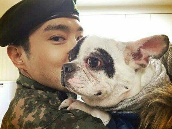 Siwon, chó siwon cắn người, sao hàn, thú cưng của sao,chuyện làng sao,sao Việt