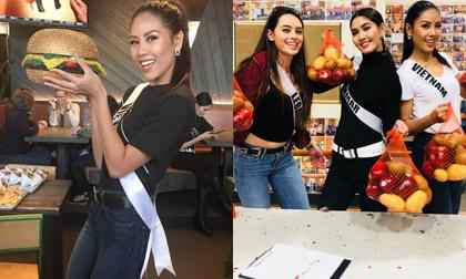Nguyễn Thị Loan, Miss Universe, Miss Universe 2017