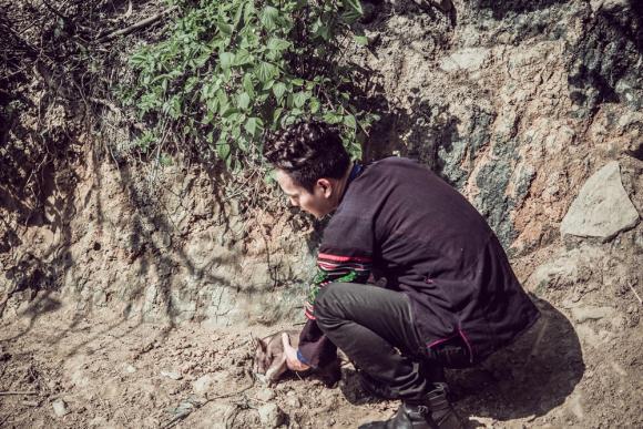Hồ Quang Hiếu bật mí bản hit xuân mới soán ngôi 'Con bướm xuân'