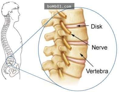 Bài tập thể dục cho dân văn phong ngồi máy tính nhiều.Dân văn phòng ngồi máy tính cả ngày nên tập ngay động tác này, đảm bảo những cơn đau lưng biến mất không dấu vết