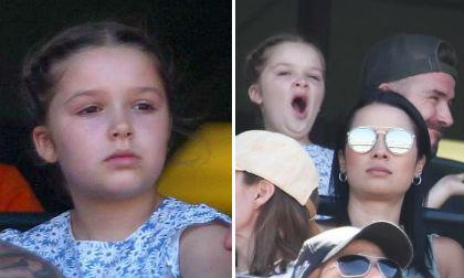 Harper Seven,con gái David Beckham, công viên disneyland