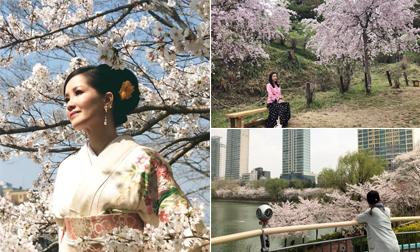 Lễ hội Hoa anh Đào 2019, Vườn hoa Tượng đài Lý Thái Tổ