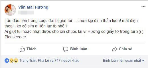 Văn Mai Hương, Văn Mai Hương bị giật túi xách, sao Việt
