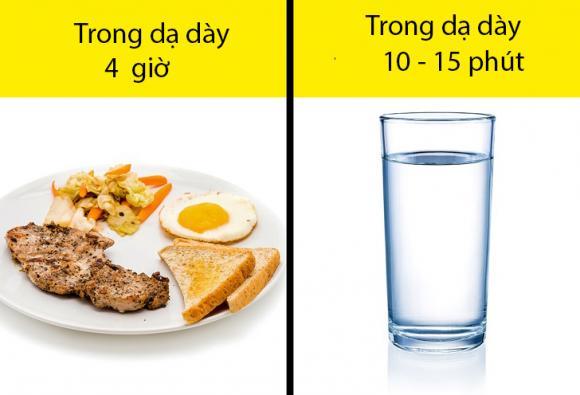 sức khỏe, uống nước khi ăn, uống nước đúng cách