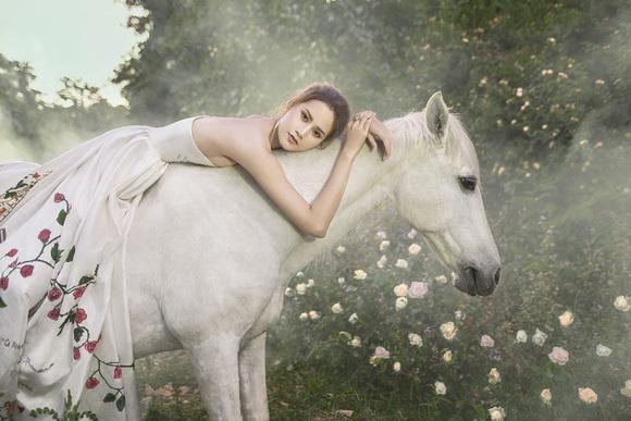 hương ly,Vietnam's Next Top Model,sao việt