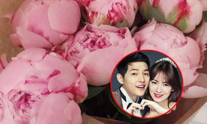 Song Hye Kyo, sao han