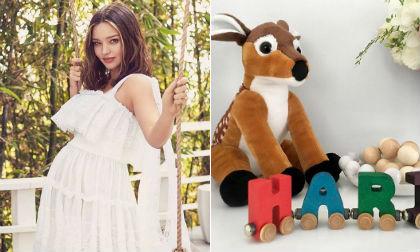 siêu mẫu Miranda Kerr, miranda kerr, sao Hollywood