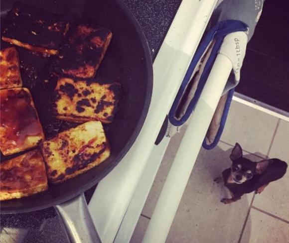 ảnh hài hước, người vụng về, người vụng về khi vào bếp