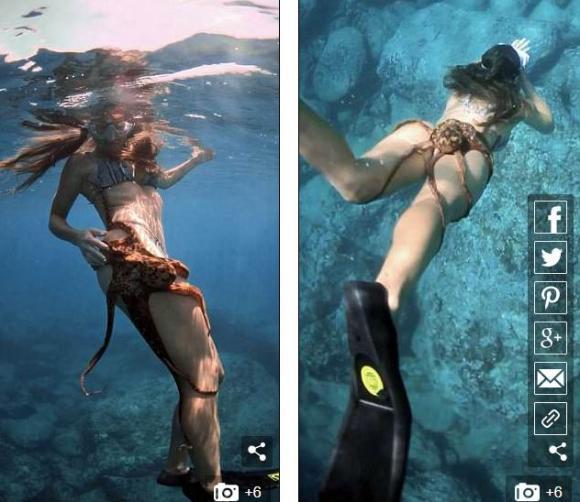 bạch tuộc bám vào đùi,cô gái bị bạch tuộc tấn công,chuyện lạ dưới đáy biển
