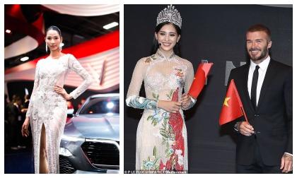 Hoa hậu Tiểu Vy, hoa hậu việt nam 2018, Trần Tiểu Vy