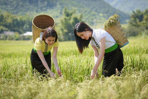 Du lịch Yên Bái, Yên Bái – trải nghiệm hành trình di sản