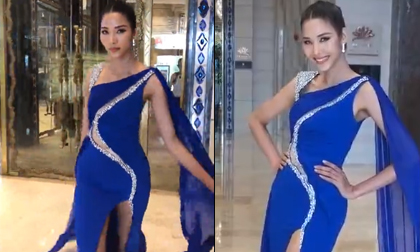 Miss Universe 2018, Hoàng Thùy, H'Hen Niê