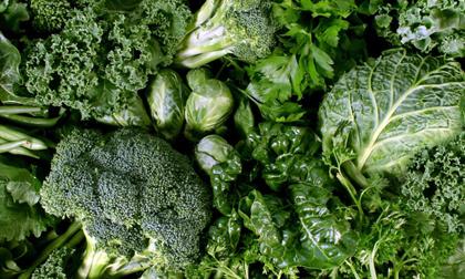 Nội tạng động vật, Ai không nên ăn nội tạng động vật, Thực phẩm tốt cho sức khỏe