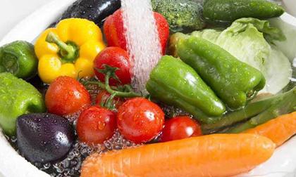 thuốc trừ sâu, loại rau không có thuốc trừ sâu, rau sạch