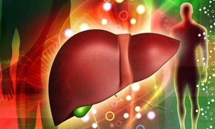 mỡ máu cao, Bệnh tim mạch, Thực phẩm ăn tiêu mỡ