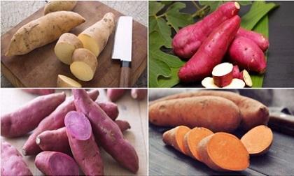 rau khoai lang, chống ung thư, rau tốt