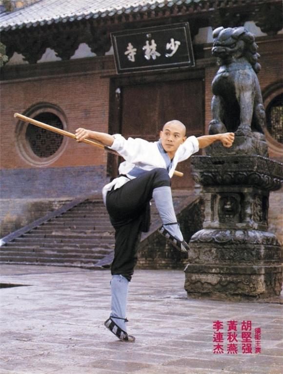 Lý Liên Kiệt,ngôi sao võ thuật,sao Hoa ngữ