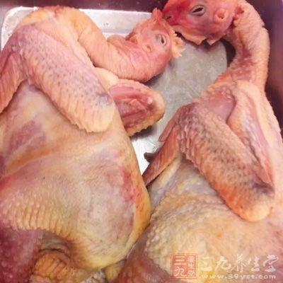 những bộ phận của gà không nên ăn, ăn bộ phân này của gà như thạch tín, chăm sóc sức khỏe