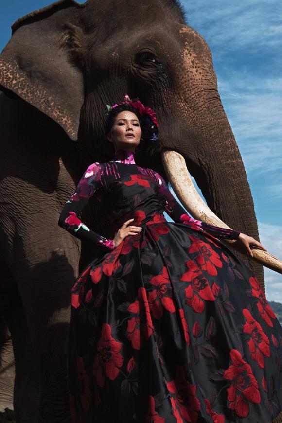 H'Hen Niê, thiết kế sắc màu, thiết kế của đỗ mạnh cường