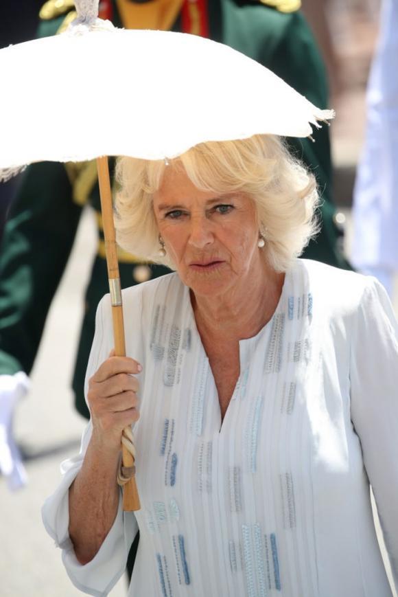 Công nương Diana,Thái tử Charles,nữ Công tước Camilla