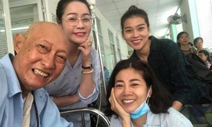Mai Phương,Mai Phương bị ung thư,Trịnh Kim Chi,sao Việt