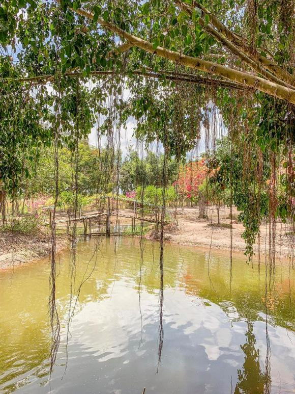 Minh Hằng,miệt vườn của Minh Hằng,sao Việt