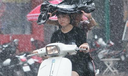 Dự báo thời tiết, thời tiết hôm nay, miền bắc mưa rào