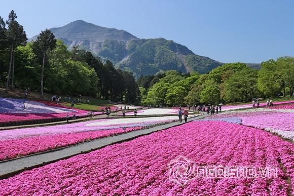 Du lịch Nhật Bản, Du lịch châu Á, Tour Nhật Bản