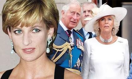 Công nương Diana,Thái tử Charles,Hoàng tử William,Hoàng gia Anh