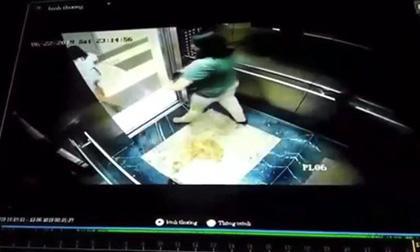 tiểu bậy, phụ nữ, thang máy chung cư, Hà Nội