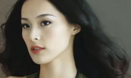 Cường Đô la, tình cũ Cường Đô la, Hạ Vi, sao Việt