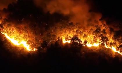 Đốt rác làm cháy rừng, Hỏa hoạn, Tin pháp luật